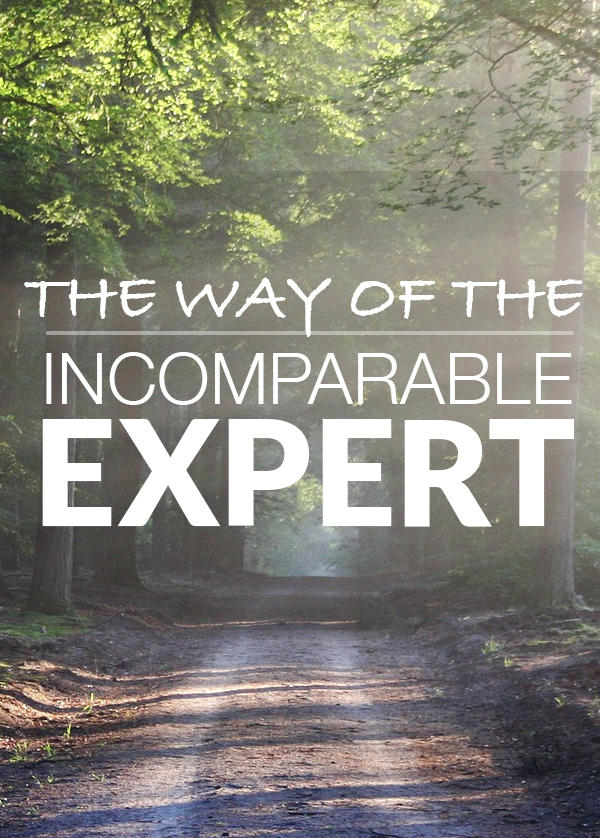 Way of the Incomparable Expert